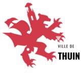 Logo E-guichet (démarches en ligne) de la commune de Thuin